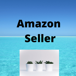 Amazon vendedor Seller